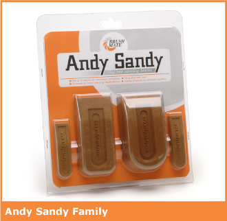 andy-sandy